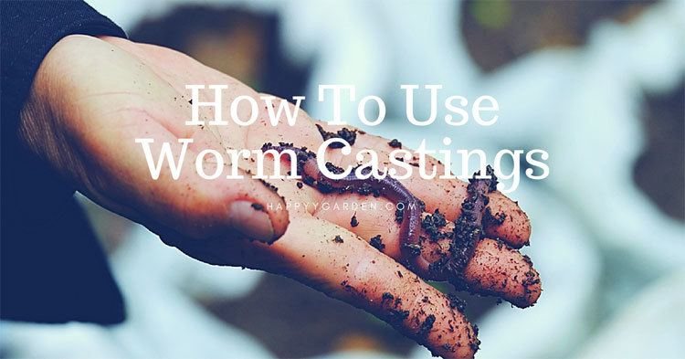 How-To-Use-Worm-Castings-happyygarden.com
