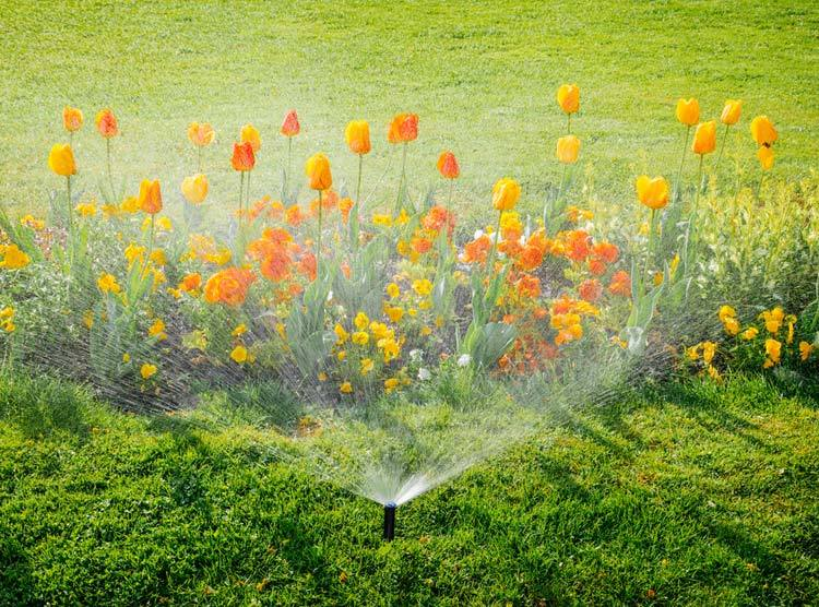 hunter-pop-up-sprinkler-heads-home-depot