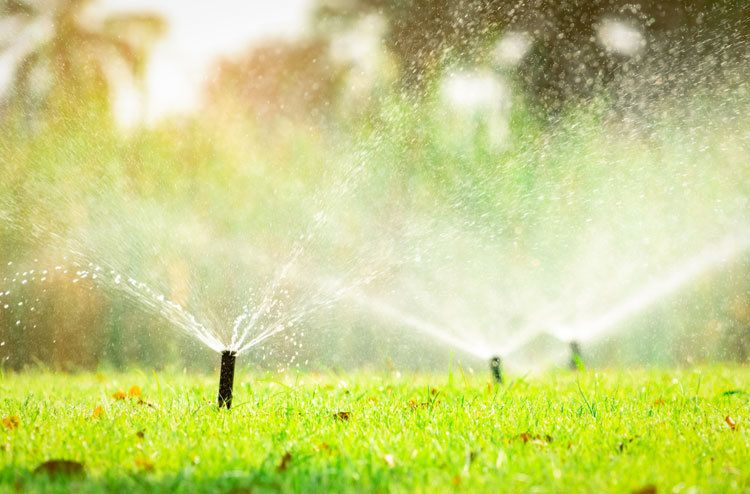 Automatic-lawn-sprinkler-system-watering-green-grass