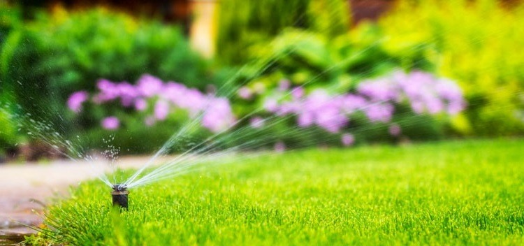 Low-water-pressure-in-one-zone-of-sprinkler-system