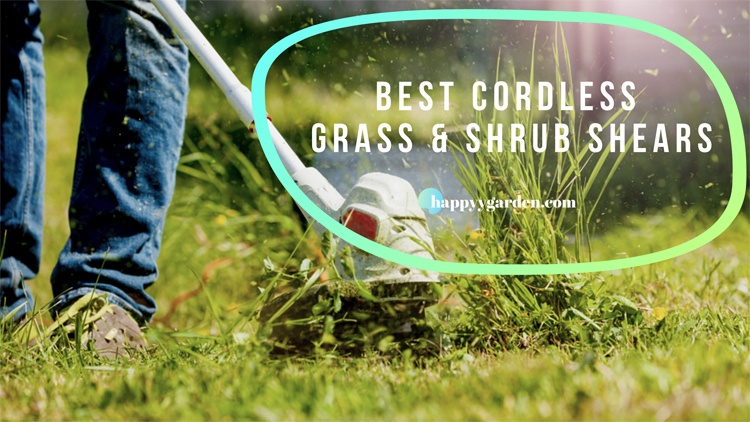 Top-5-Best-Cordless-Grass-and-Shrub-Shears-With-Extension-Handle