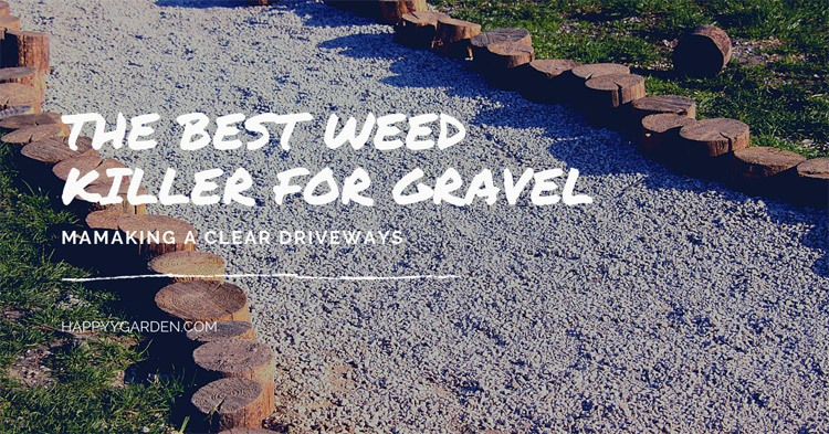 best-weed-killer-for-gravel-driveways