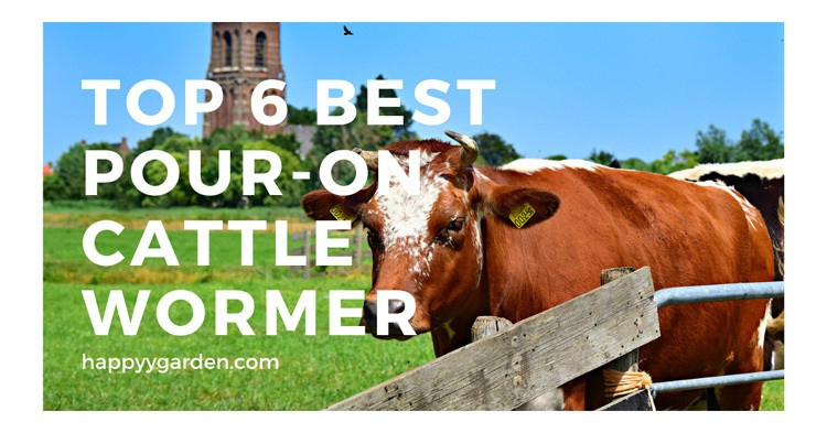 top-6-best-pour-on-cattle-wormer