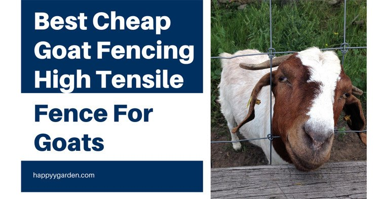 Best-Cheap-Goat-Fencing-4-High-Tensile-Fence-For-Goats