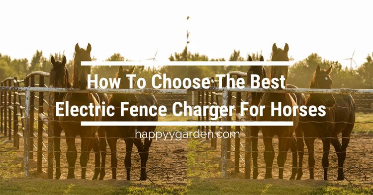 Choose-The-Best-electric-fence-charger-for-horses