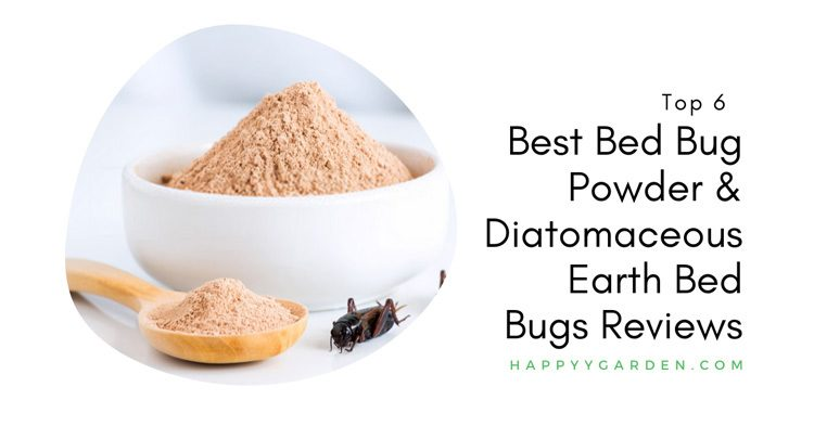 Top-6-Best-Bed-Bug-Powder-And-Diatomaceous-Earth-Bed-Bugs-Reviews