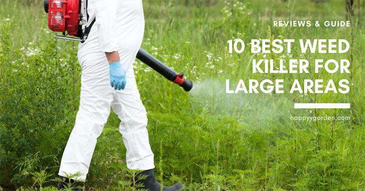 10-Best-Weed-Killer-for-Large-Areas