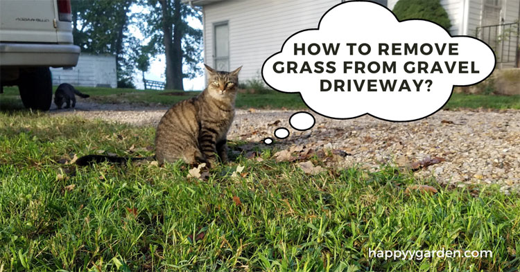 how-to-remove-grass-from-gravel-driveway