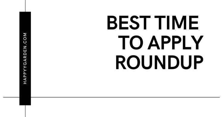 Best-Time-To-Apply-Roundup
