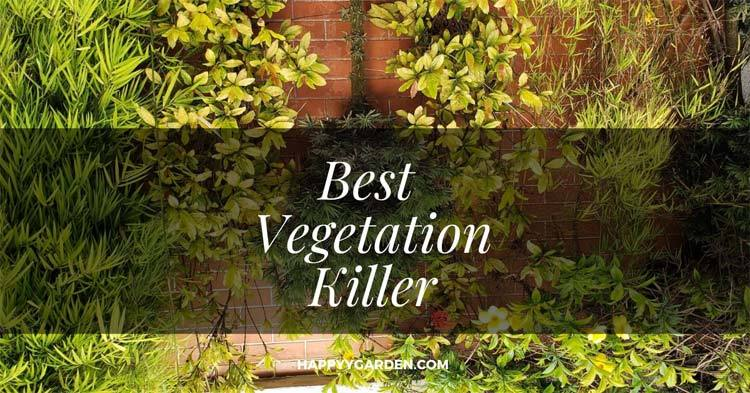 Best-Vegetation-Killer