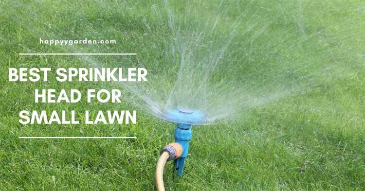 Best-Sprinkler-For-Small-Lawn